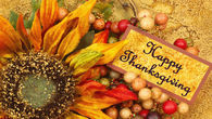 141542-Happy-Thanksgiving